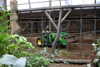 Chester Zoo B