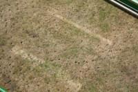 july-2006-dry-holes.jpg