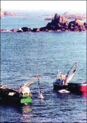 Scoubidou off Brittany.jpg