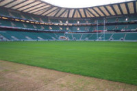 twickpitchdamage.jpg
