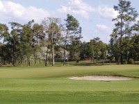 Pinehurst12_website.jpg