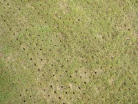 Outfield Aeration