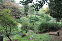 LutonHoo Gardens2