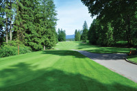 Seymour Tee Fairway