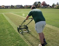 Cricket Rake