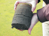 Compost Rootzone Profile