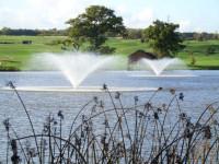 ottobine fountains