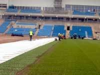 arena-carpet-laying.jpg