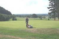 fam4aug03cheshiremowgreen.jpg