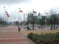 atlanta-flags.jpg