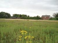 LandscapePlanning1