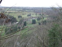 Bridgnorth The View from High Rock shows high number of non indigenous trees