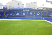 chelsea-county-turf-2-lo-re.jpg