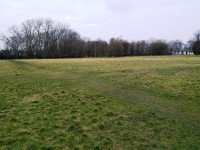 Football pitches reverting to long grass regimes in a Manchester park