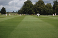 Stowe Cricket