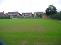 Tennis courts seed germinating1