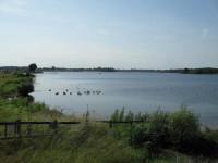 RHS Estuary