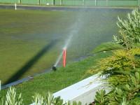 Irrigation 3.JPG
