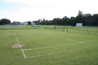 cricket-judging-2008-114_website.jpg