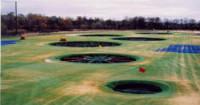 Top-Golf2.jpg