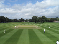 DulwichCollege Cricket