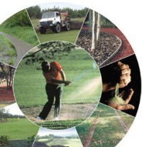 golf-wheelsmall.jpg