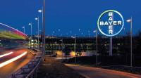 Bayer3.jpg