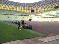 Gdansk pitch re turf