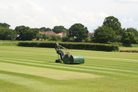 cricket-square-mowing.jpg