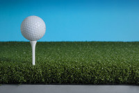 T-Golf04.jpg
