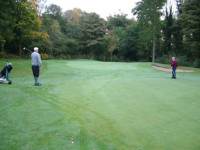 treesand-woodland-golf.jpg
