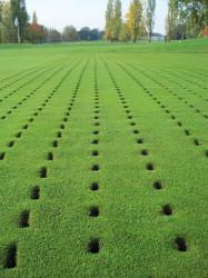 Greg Evans Golf Green Aeration