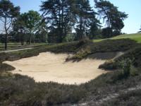 PCS-golf-12.jpg
