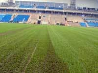 arena-carpet-pitch.jpg