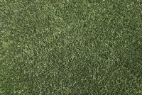 Gosforth Pitch CloseUp