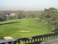 Effect Iron Treated on right side of Fairway.JPG