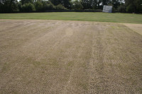 beaconsfield  scarification