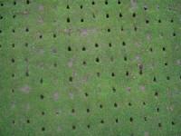 apr-2006-diary-holes.jpg