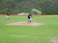 Halton Pitcher