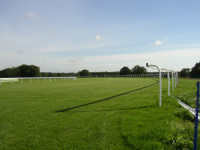 ascot-pitch-3.jpg