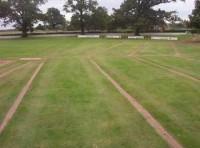nov-cricket-diary-drainage.jpg