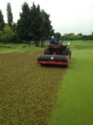 Picture 5. Main greens being cored