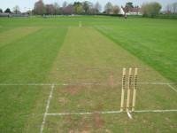 diary2006-crikett-wickets.jpg