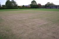 cricket-bowls-pics-oct-08-006_website.jpg