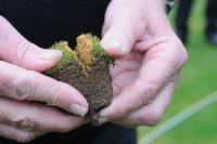 Soil core after Graden sand injection mr.jpg