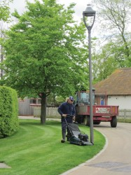 Newmarket Mowing3