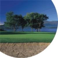 humberclyde_golf (2).gif