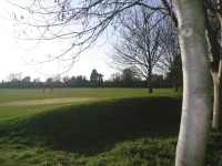 SummerFields Golf