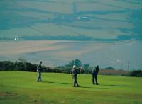 cardigan golf club 029051 full