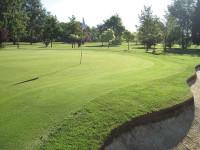 Greg Evans Golf Green